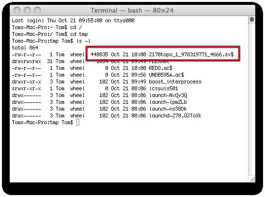 Terminal — bash — 80×241